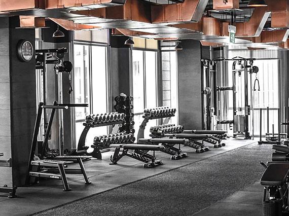 D5 Gym
